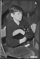 .A boy holding a cat in his arms during Holland<br /> Flood,  February 5, 1953 <br /> <br /> In Rotterdam in the Ahoy hall, the evacues arrive at hundreds. A large number of Van Goeree came in on Thursday, with old people and children]