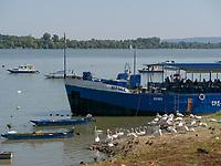 Restaurant-Boote, Zemuner Kai - Zemurski kej, Belgrad, Serbien, Europa<br /> restaurant ship at Zemmun Quai; Belgrade; Serbia; Europe