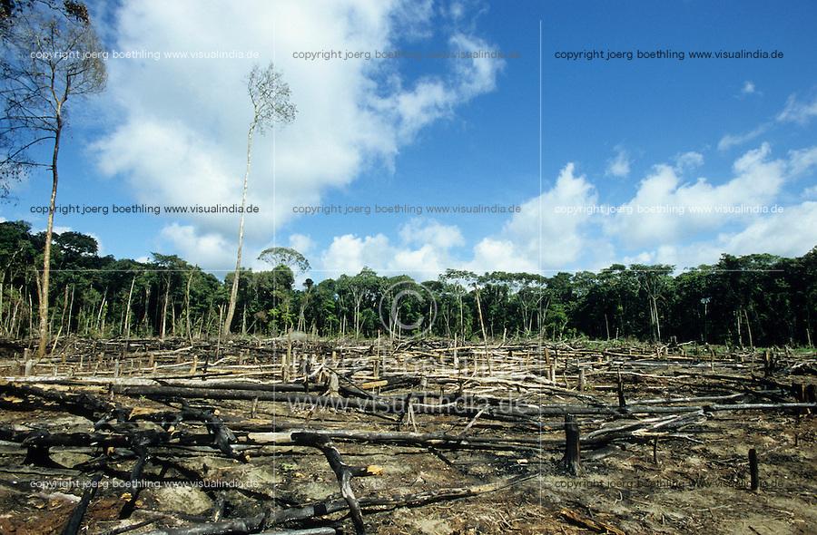 BRAZIL, Amazon, slash and burn, burned and destroyed rainforest at river Jurua / BRASILIEN Amazonas, abgebrannter, gerodeter, abgeholzter Regenwald am Fluss Jurua