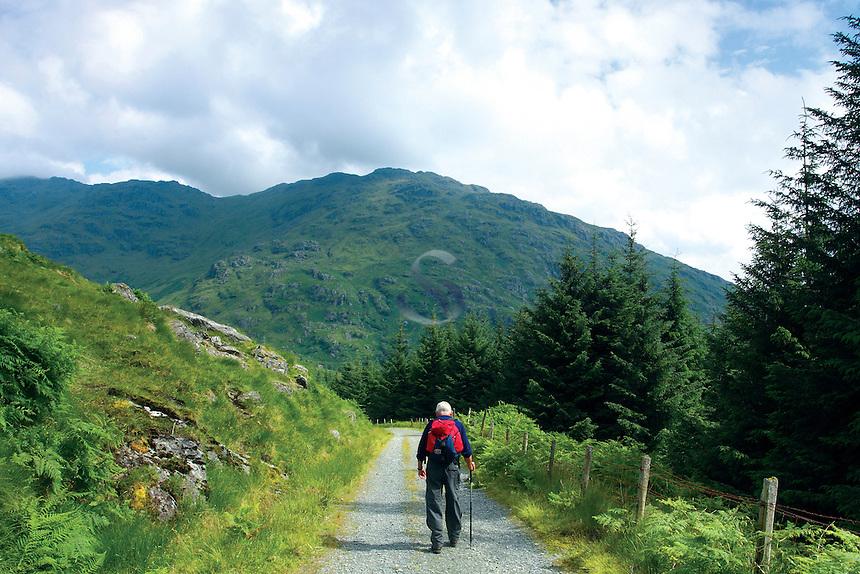 A walker descending through Glen Loin beneath Ben Vorlich, one of the Arrochar Alps, near Inveruglas, Loch Lomond and The Trossachs National Park, Argyll & Bute<br /> <br /> Copyright www.scottishhorizons.co.uk/Keith Fergus 2011 All Rights Reserved