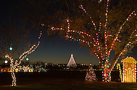 Zilker Holiday Tree as seen through the Austin Trail of Lights, is visited by hundreds of thousands of sparkly-eyed visitors