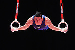 World Championships Gymnastics Glasgow Mens Qualifications