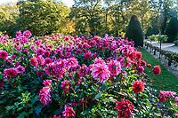 France, Indre-et-Loire (37), Chenonceaux, château et jardins de Chenonceau, le potager,