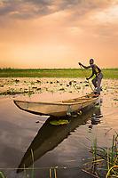Pond Under the Sky<br /> Nguru lake, Yobe State, Nigeria.