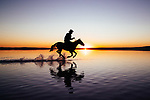 Horse rider mirrored in water at sunset by Mahmut Emre Erol