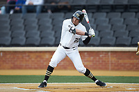 Michael Ludowig (22) of the Wake Forest Demon Deacons at bat against the Sacred Heart Pioneers at David F. Couch Ballpark on February 15, 2019 in  Winston-Salem, North Carolina.  The Demon Deacons defeated the Pioneers 14-1. (Brian Westerholt/Four Seam Images)