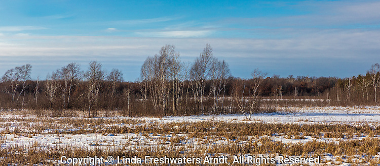 Crex Meadows wildlife area in February.