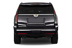 Straight rear view of 2017 Cadillac Escalade Luxury 5 Door SUV Rear View  stock images