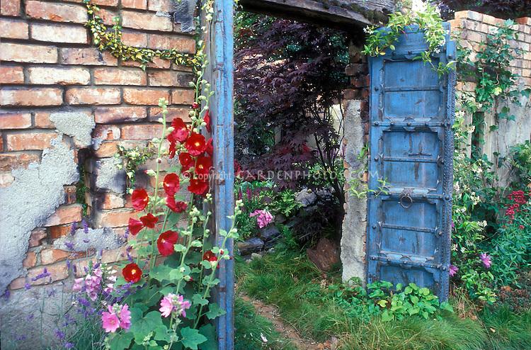 Blue doors, walled secret garden, red hibiscus, rustic brick walls, overgrown plants