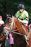 31 May 2010: Quality Road and jockey John Velazquez go to the post for the Metropolitan Mile Handicap at Belmont Park in Elmont NY.