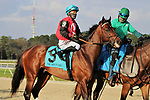 February 6, 2021: #9 CANDY MAN ROCKET and Jockey Junior Alvarado earn Kentucky Derby Points in the Grade III Sam F. Davis Stakes for Trainer Bill Mott at Tampa Bay Downs in Oldsmar, Florida on February 6, 2021. Casey Delikat/Eclipse Sportswire/CSM