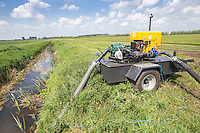 Irrigation pump extracting water from farm drain - Cambridgeshire, May