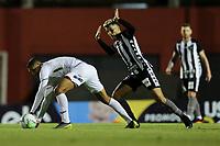 26th August 2020; Estadio Vila Capanema, Curitiba, Brazil; Copa Do Brasil, Parana Clube versus Botafogo; Higor Metitão of Parana Clube is fouled by Bruno Nazário of Botafogo