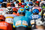 The peloton during Stage 9 of the Vuelta Espana 2020 running 157.7km from B.M. Cid Campeador. Castrillo del Val to Aguilar de Campo, Spain. 29th October 2020.    <br /> Picture: Luis Angel Gomez/PhotoSportGomez | Cyclefile<br /> <br /> All photos usage must carry mandatory copyright credit (© Cyclefile | Luis Angel Gomez/PhotoSportGomez)