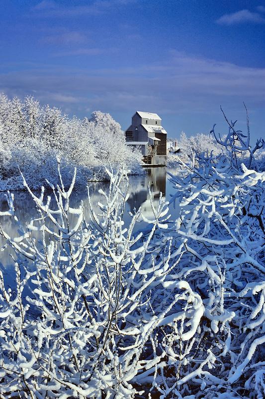 Kompf grain mill after snowstorm. Monroe, Oregon.