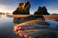 Low tide with exposed colorful rock. Bandon, Oregon
