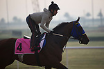 DUBAI,UNITED ARAB EMIRATES-MARCH 23: He Runs Away,trained by Richardo Colombo,exercises in preparation for the UAE Derby at Meydan Racecourse on March 23,2017 in Dubai,United Arab Emirates (Photo by Kaz Ishida/Eclipse Sportswire/Getty Images)
