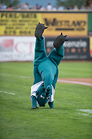 Ogden Raptors mascot Oggie before a Pioneer League game against the Billings Mustangs at Lindquist Field on August 17, 2018 in Ogden, Utah. The Billings Mustangs defeated the Ogden Raptors by a score of 6-3. (Zachary Lucy/Four Seam Images)