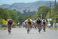 Brad Evans (left), Chris Lawless (yellow jersey), Alex Frame and Dion Smith (right) sprint down the final straight for the finish. UCI Oceania Tour - NZ Cycle Classic stage two - Masterton to Martinborough circuit in Wairarapa, New Zealand on Thursday, 21 January 2016. Photo: Dave Lintott / lintottphoto.co.nz