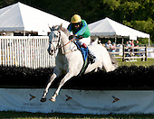 Jack Fisher's Maya Charli runs away from the field in the Henry Collins claimer.