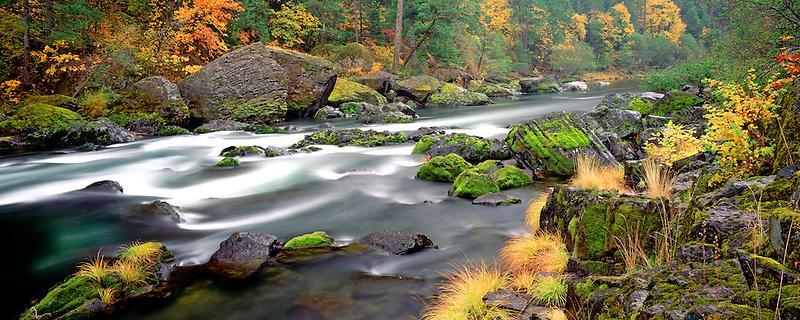 Fall colors alnog North Fork Umpqua River, Oregon.