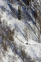 Aerial of musher on trail up from Skwentna River near Happy River steps 2006 Iditarod Alaska Winter