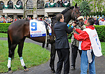 Wilkinson gets saddled in the paddock prior to the Blue Grass Stakes on April 16, 2011 at Keeneland in Lexington, Kentucky.  (Bob Mayberger/Eclipse Sportswire)