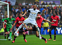 Chico Flores of Swansea.<br />