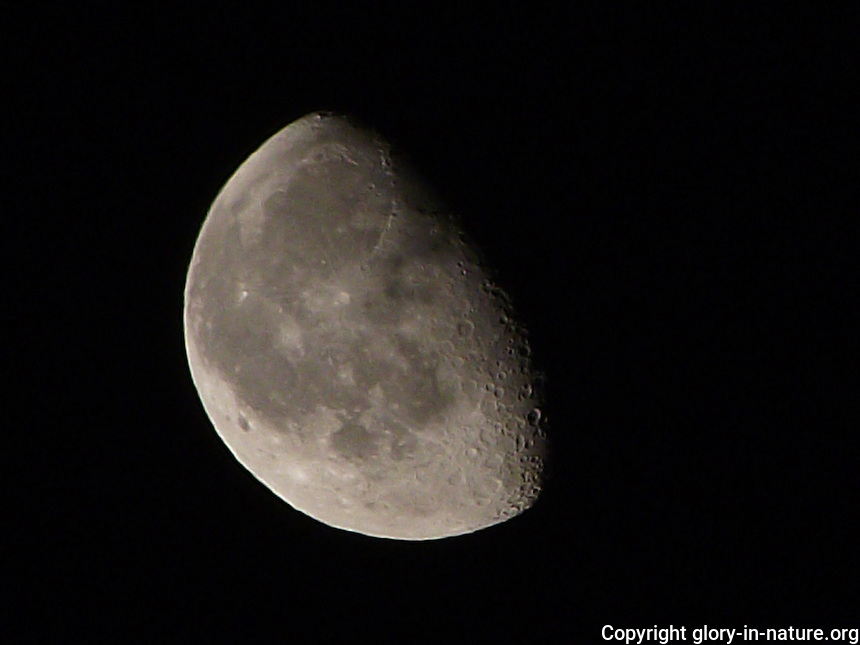 Clear lunar landscape in waning gibbous phase.