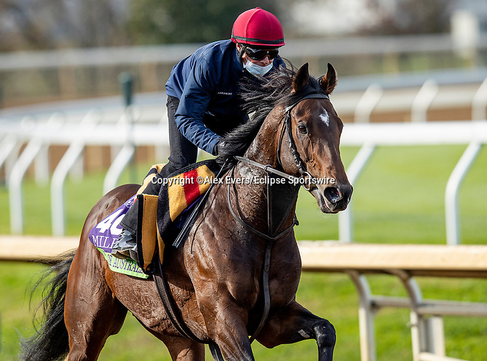 November 5, 2020: Order Of Australia, trained by trainer Aidan P. O'Brien, exercises in preparation for the Breeders' Cup Mile at at Keeneland Racetrack in Lexington, Kentucky on November 5, 2020. Alex Evers/Eclipse Sportswire/Breeders Cup