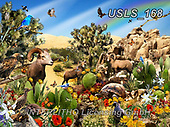 Lori, LANDSCAPES, LANDSCHAFTEN, PAISAJES, paintings+++++Desert Denizens,USLS168,#l#, EVERYDAY ,puzzle,puzzles