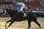 HOT SPRINGS, AR - JANUARY 16: the running of the Smarty Jones Stakes at Oaklawn Park on January 16, 2017 in Hot Springs, Arkansas. (Photo by Justin Manning/Elipse Sportwire/Getty Images)
