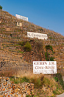 Signs saying Cote Rotie E Guigal M Chapoutier, Gering JM. Terraced vineyards in the Cote Rotie district around Ampuis in northern Rhone planted with the Syrah grape. Ampuis, Cote Rotie, Rhone, France, Europe