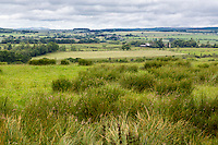Cumbria, England, UK.  Countryside View along Hadrian's Wall Footpath.