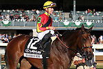 October 20, 2018 : #12 Shamrock Rose and jockey Tyler Gaffalione win the 20th running of The Lexus Raven Run Grade 2 $250,000 for owner, Conrad Farms and trainer Mark Casse at Keeneland Race Coure on October 20, 2018 in Lexington, KY.  Candice Chavez/ESW/CSM