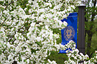 May 2, 2019; University seal banner and spring blooms (Photo by Matt Cashore/University of Notre Dame)