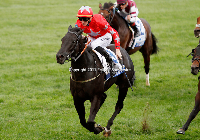 """LEXINGTON, KY - October 7, 2017. #3 Suedois (FR) and jockey Daniel Tudhope win the 32nd Shadwell Turf Mile, Grade 1, $1,000,000 """"Win and You're In Breeders' Cup Turf Mile"""" for owner George Turner and Clipper Logistics (Steve Parkin) and trainer David O'Meara at Keeneland Race Course.  Lexington, Kentucky. (Photo by Candice Chavez/Eclipse Sportswire/Getty Images)"""
