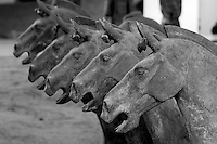 Horses in the army of terracotta warriors in Emperor Qin Shihuangdi's tomb, Bingmayong, Xian, Shaanxi, China.