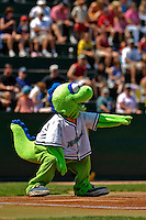 31 July 2007:  Vermont Lake Monsters Mascot Champ entertains the crowd at a game against the Hudson Valley Renegades at Historic Centennial Field in Burlington, Vermont. The Lake Monsters defeated the Renegades 4-3 to sweep the 3-game series...Mandatory Photo Credit: Ed Wolfstein Photo