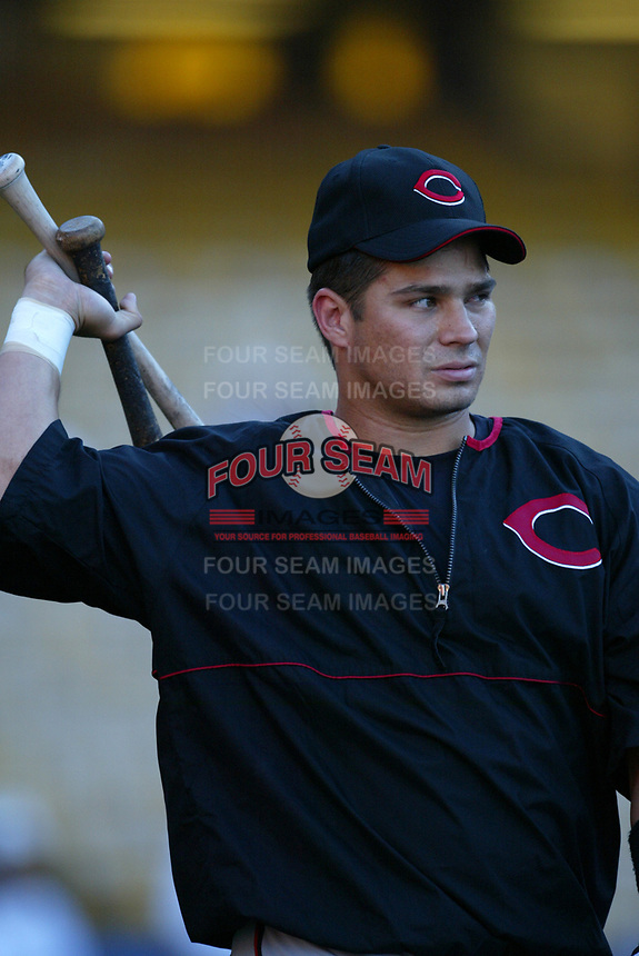 Brandon Larson of the Cincinnati Reds during a 2003 season MLB game at Dodger Stadium in Los Angeles, California. (Larry Goren/Four Seam Images)