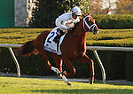 08 October. Sidney's Candy leads the field past the stands  for the first time in the Shadwell Turf Mile.