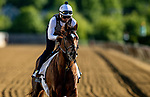 MAY13, 2021: Crowded Trade gallops in preparation for the Preakness Stakes at Pimlico Race Course in Baltimore, Maryland on May 13, 2021. EversEclipse Sportswire/CSM
