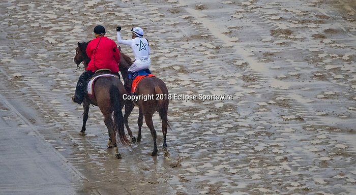 LOUISVILLE, KY - MAY 05: Mike Smith cheers after winningthe 144th Kentucky Derby aboard Justify #7 at Churchill Downs on May 5, 2018 in Louisville, Kentucky. (Photo by John Vorhees/Eclipse Sportswire/Getty Images)
