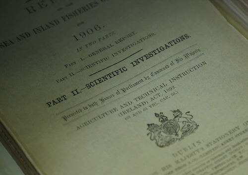 Image of the Scientific Investigations intro from the Sea and Inland Fisheries report for 1906
