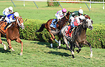 Ironicus (no. 1), ridden by Javier Castellano and trained by Claude McGaughey III, wins the 57th running of the grade 2 Bernard Baruch Handicap for three year olds and upward on September 7, 2015 at Saratoga Race Course in Saratoga Springs, New York. (Bob Mayberger/Eclipse Sportswire)