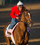 LOUISVILLE, KY - APRIL 30: Eskimo Kisses, trained by Kenny McPeek, exercises in preparation for the Kentucky Oaks at Churchill Downs on April 30, 2018 in Louisville, Kentucky. (Photo by John Voorhees/Eclipse Sportswire/Getty Images)