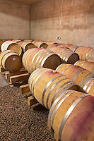 Domaine Mas Champart St Chinian. Languedoc. Barrel cellar. France. Europe.