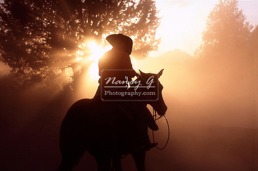 Cowboy on horseback with sun beams in dust