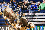 JOAO RICARDO VIEIRA (3) in action during the Professional Bull Riders, Iron Cowboy V bull riding event, at the AT & T stadium in Arlington, Texas.