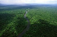 imagem aérea do rio Cautário <br />Reserva Extrativista do Rio Cautário - Rondônia<br />outubro de 2004